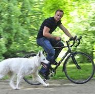 mit dem hund fahrrad fahren hund katz blog agila. Black Bedroom Furniture Sets. Home Design Ideas