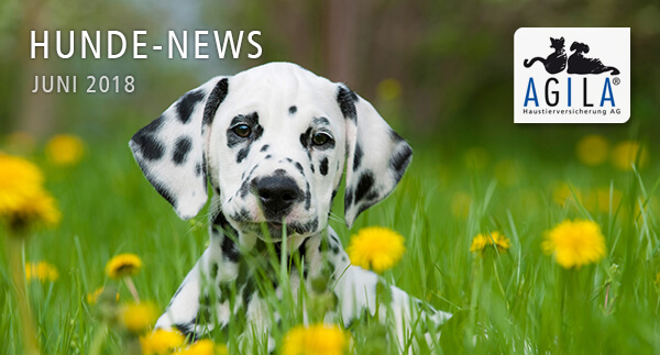 AGILA Hunde-News Juni 2018