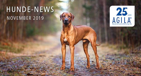AGILA Hunde-News November 2019