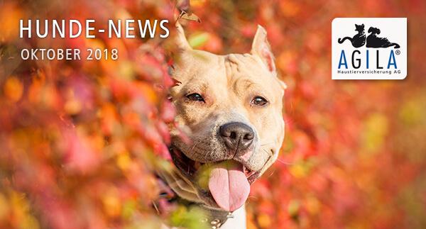AGILA Hunde-News Oktober 2018