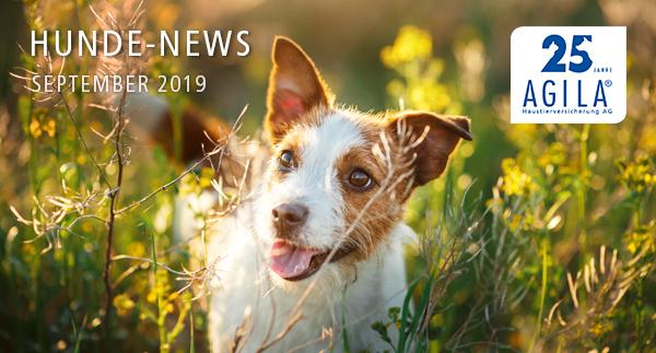 AGILA Hunde-News September 2019
