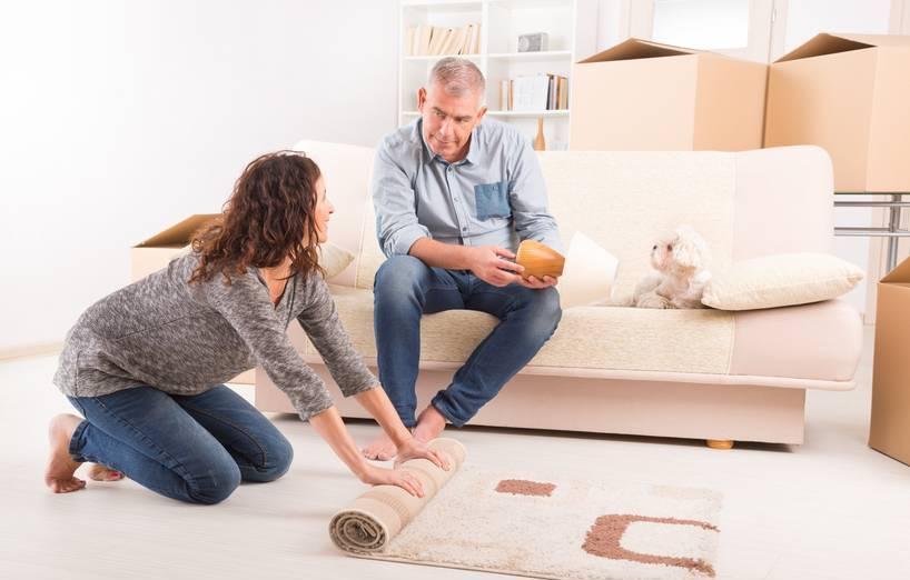 stressfreier umzug wie sich hund katz am besten eingew hnen agila. Black Bedroom Furniture Sets. Home Design Ideas