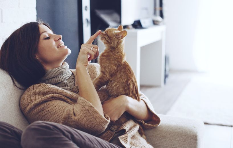 wie geht es dir gesundheitscheck bei der katze agila. Black Bedroom Furniture Sets. Home Design Ideas